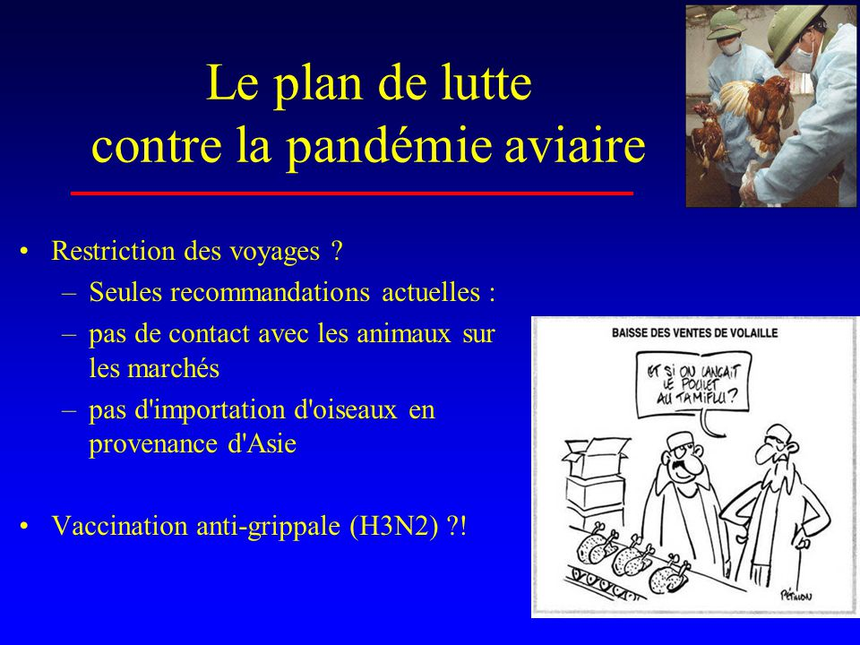 Le plan de lutte contre la pandémie aviaire