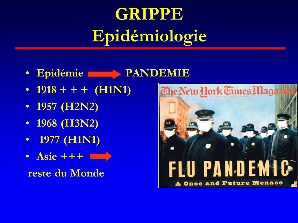 GRIPPE Epidémiologie Epidémie PANDEMIE 1918 + + + (H1N1) 1957 (H2N2)