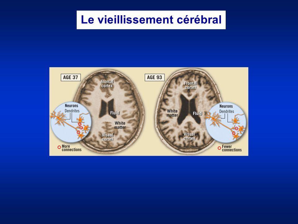 Le vieillissement cérébral