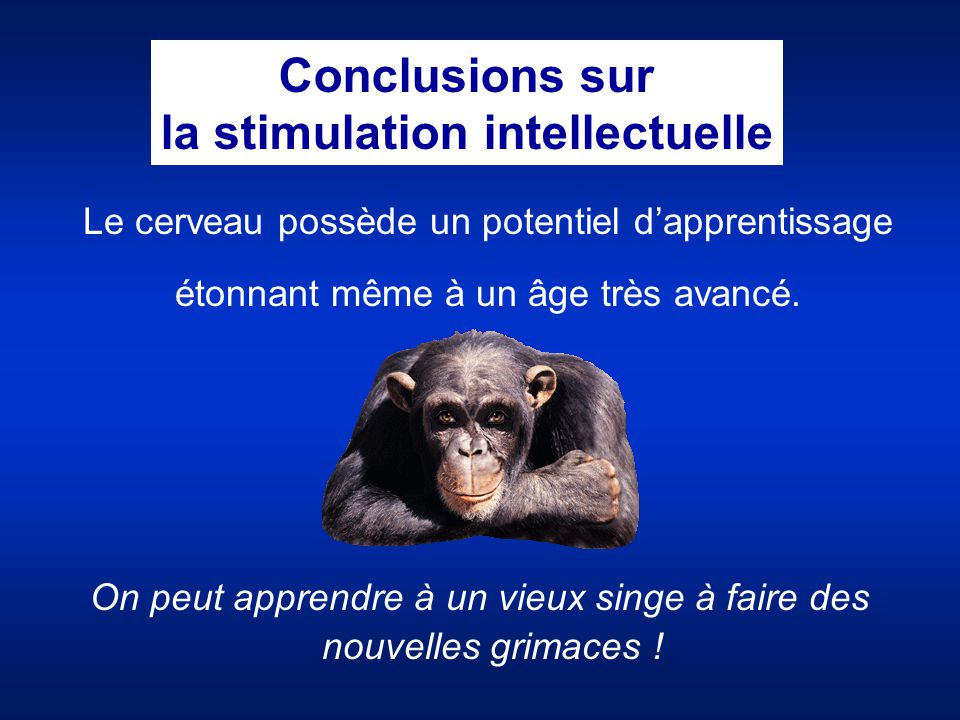 la stimulation intellectuelle