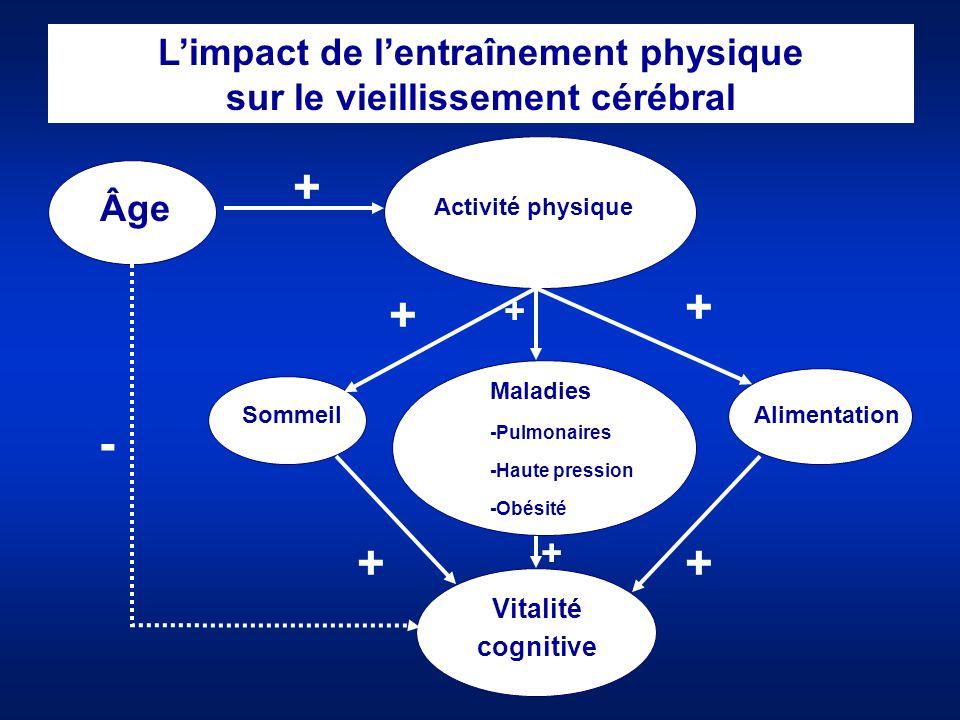 L'impact de l'entraînement physique sur le vieillissement cérébral