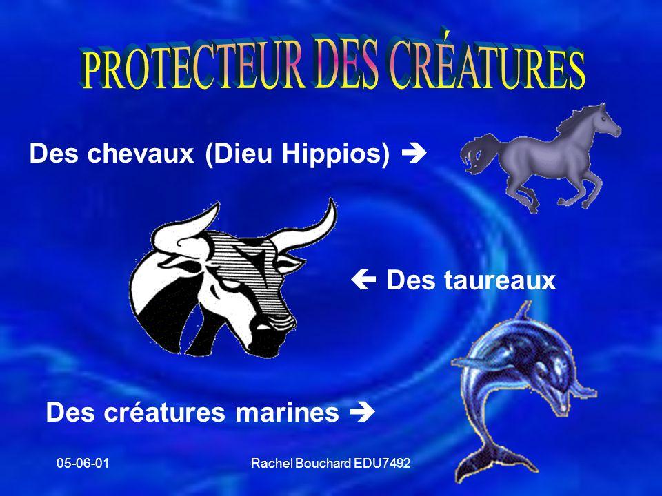 PROTECTEUR DES CRÉATURES