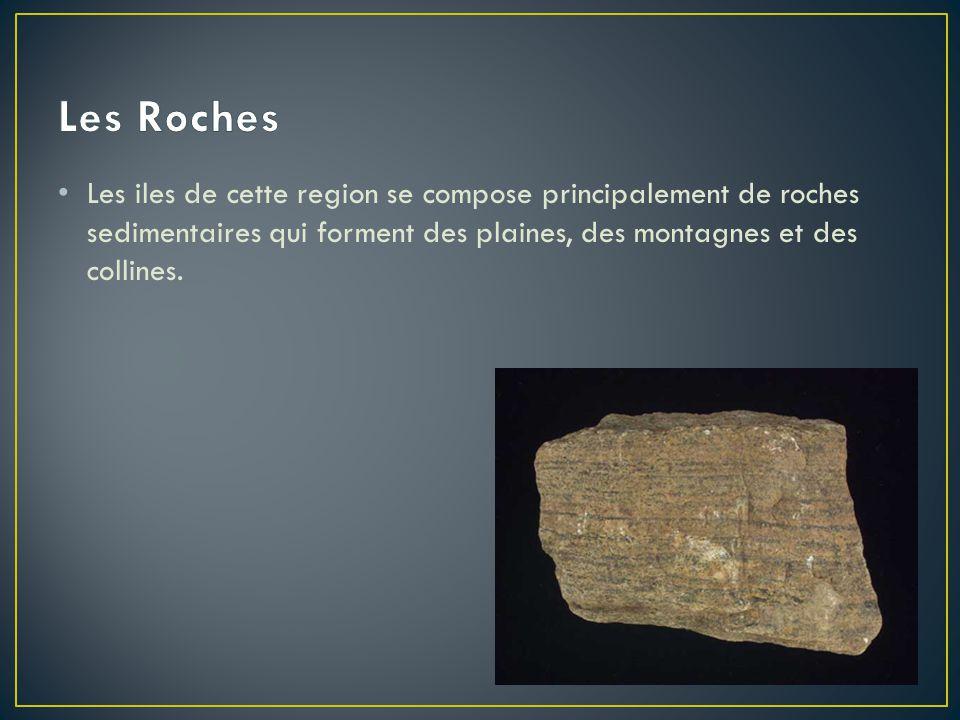 Les Roches Les iles de cette region se compose principalement de roches sedimentaires qui forment des plaines, des montagnes et des collines.