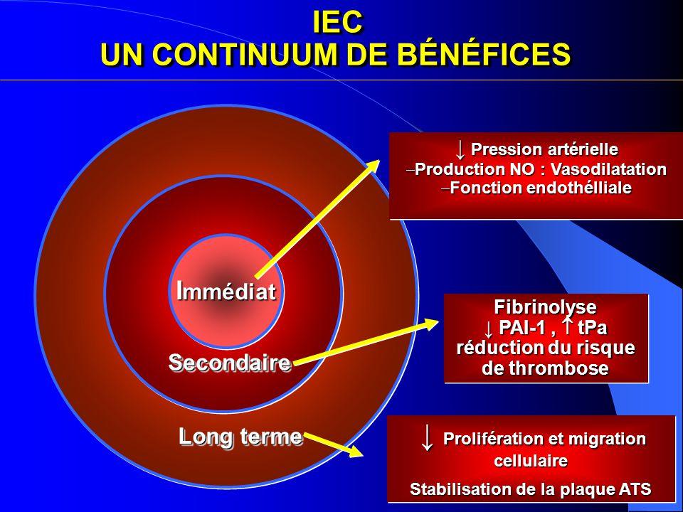 IEC UN CONTINUUM DE BÉNÉFICES