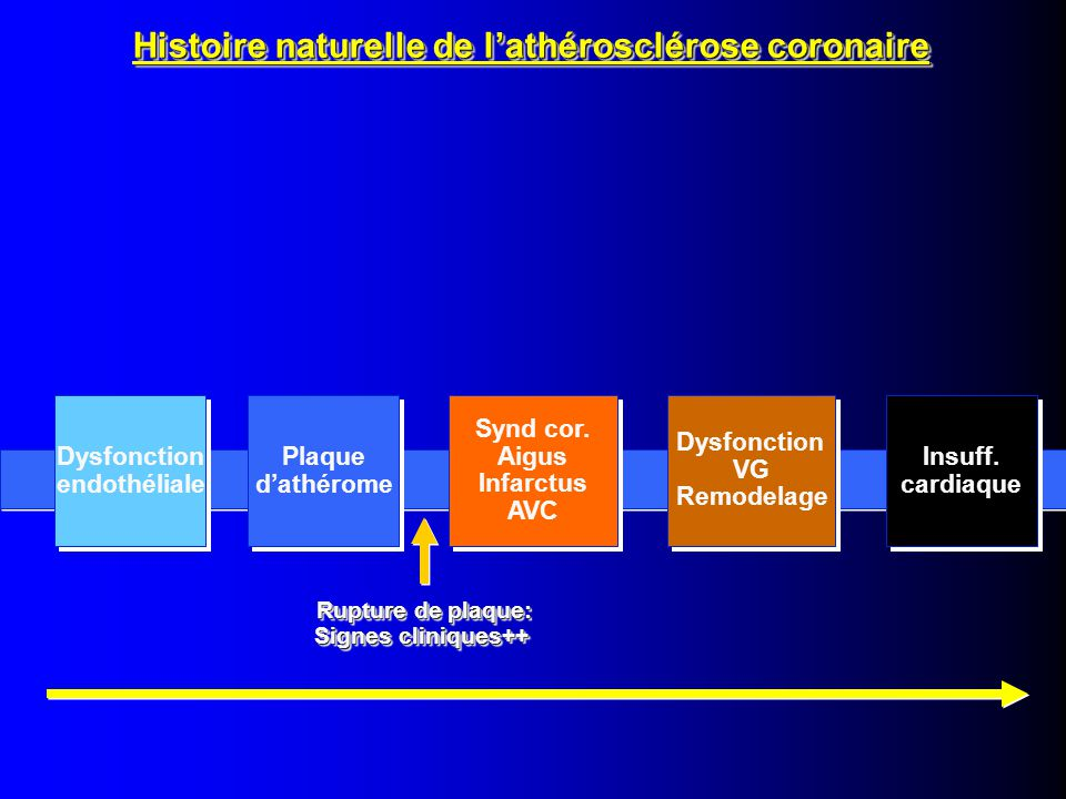 Histoire naturelle de l'athérosclérose coronaire