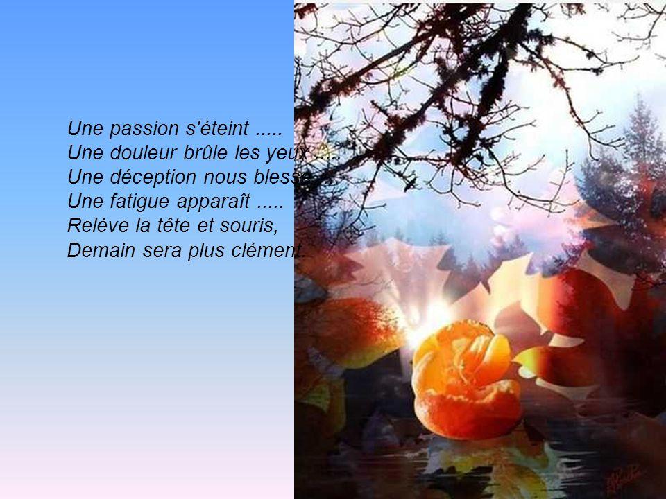 Une passion s éteint ..... Une douleur brûle les yeux ..... Une déception nous blesse .... Une fatigue apparaît .....