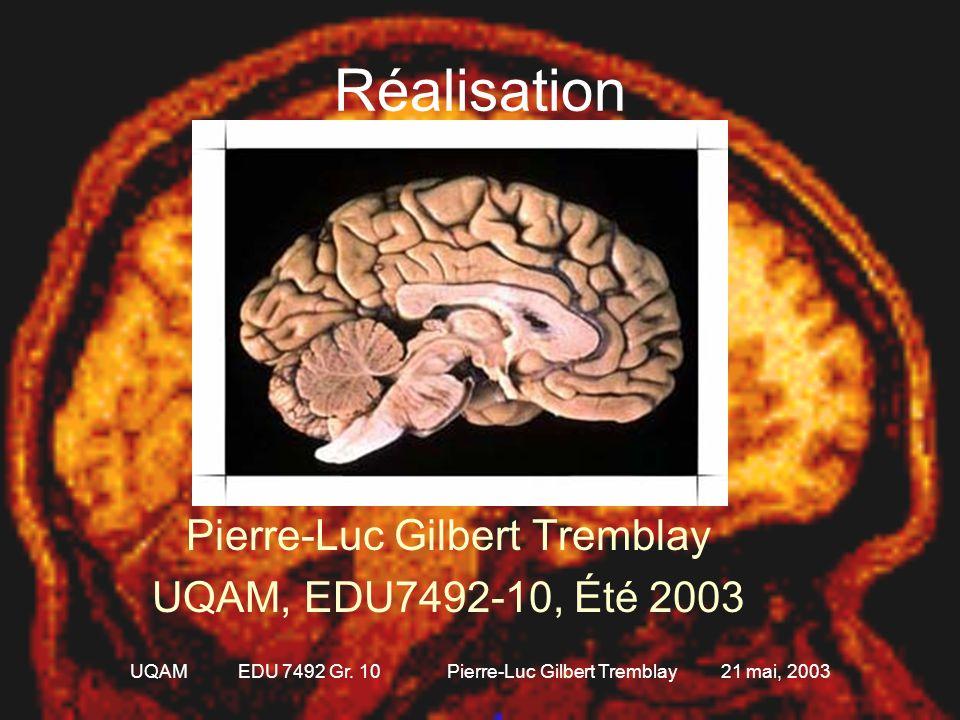 Réalisation Pierre-Luc Gilbert Tremblay UQAM, EDU7492-10, Été 2003