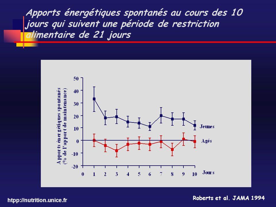 Apports énergétiques spontanés au cours des 10 jours qui suivent une période de restriction alimentaire de 21 jours