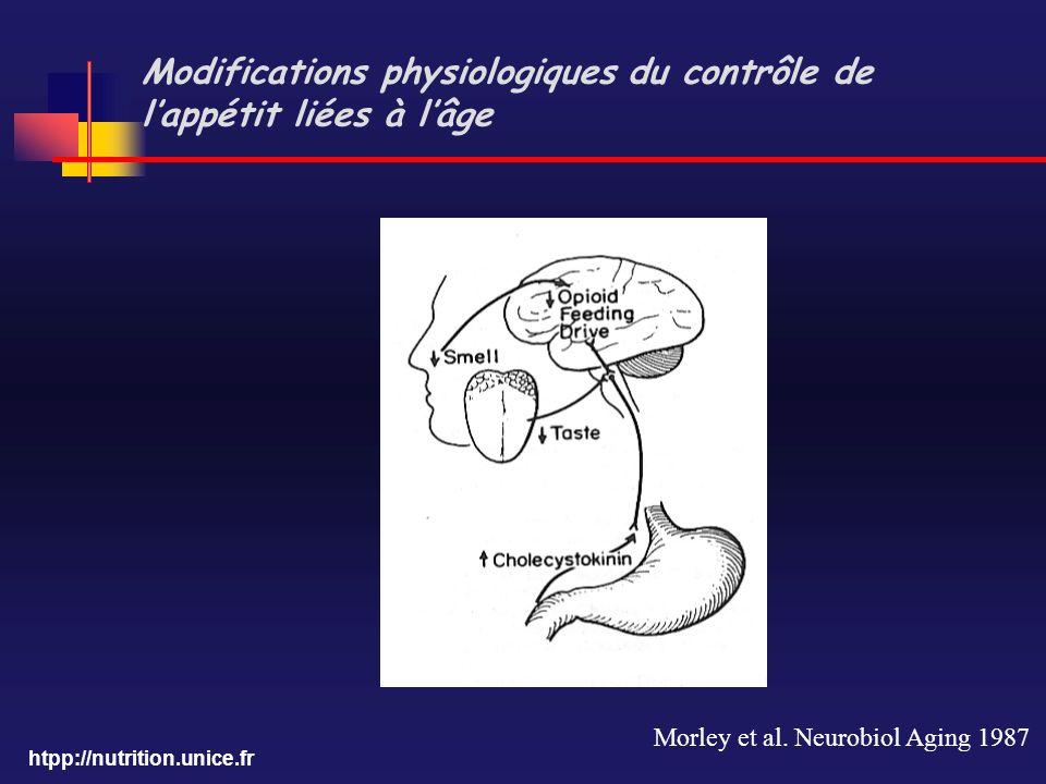 Modifications physiologiques du contrôle de l'appétit liées à l'âge
