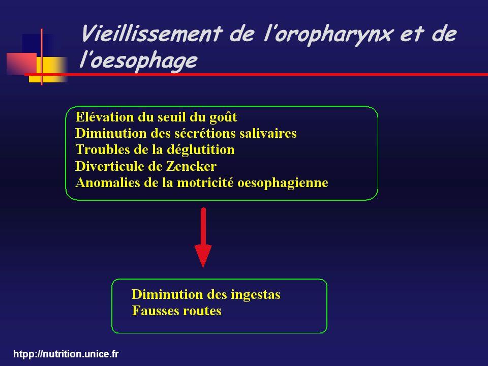 Vieillissement de l'oropharynx et de l'oesophage