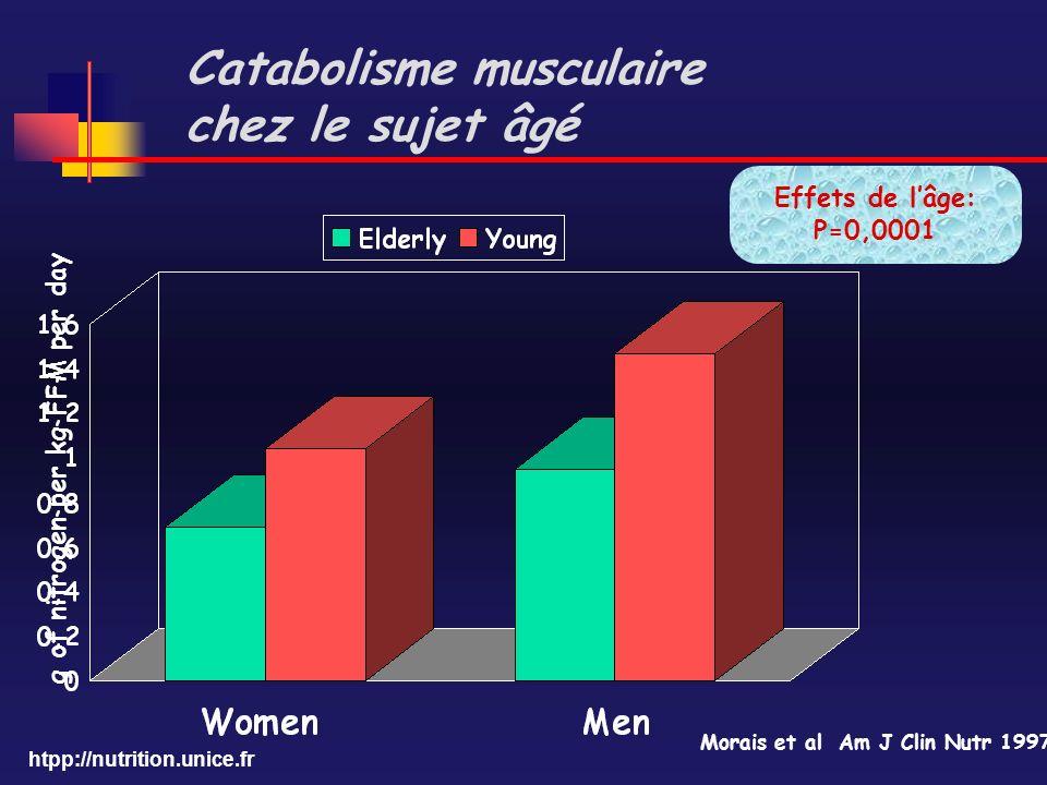 Catabolisme musculaire chez le sujet âgé