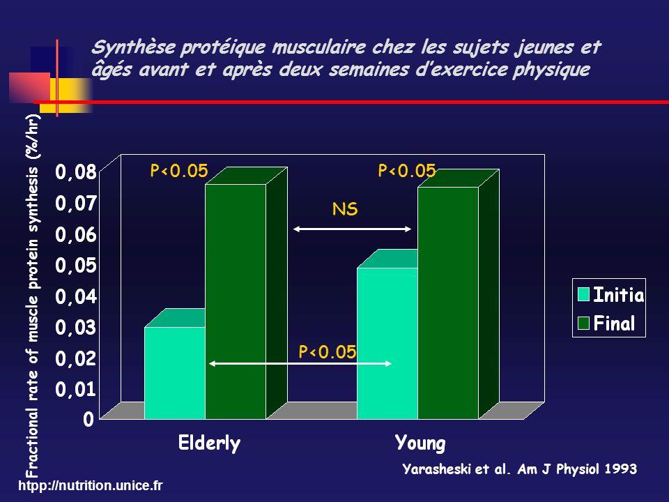 Synthèse protéique musculaire chez les sujets jeunes et âgés avant et après deux semaines d'exercice physique