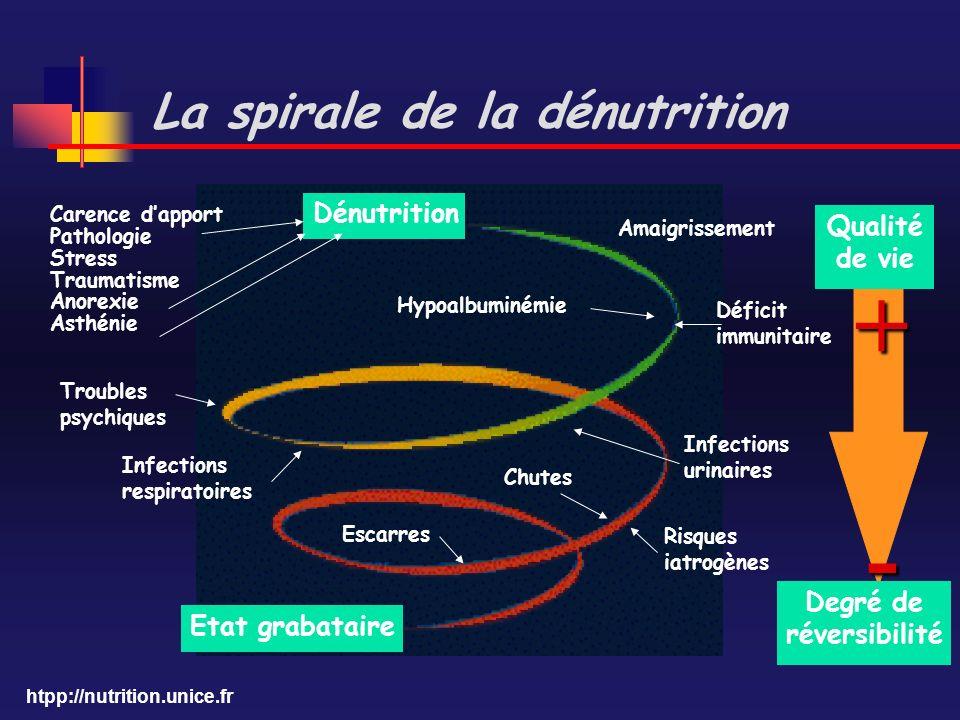 La spirale de la dénutrition