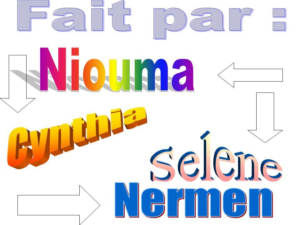 Fait par : Niouma Cynthia Selene Nermen
