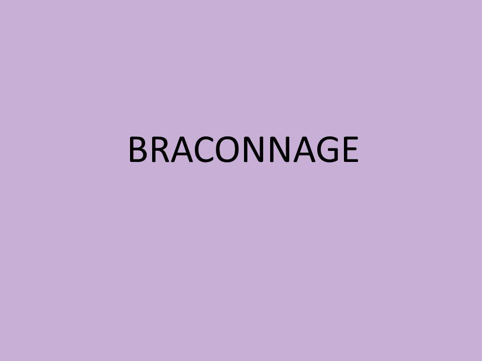BRACONNAGE