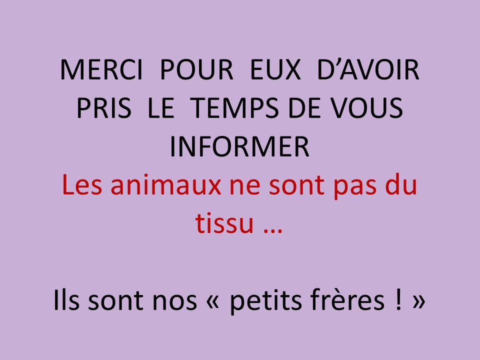 MERCI POUR EUX D'AVOIR PRIS LE TEMPS DE VOUS INFORMER Les animaux ne sont pas du tissu … Ils sont nos « petits frères ! »