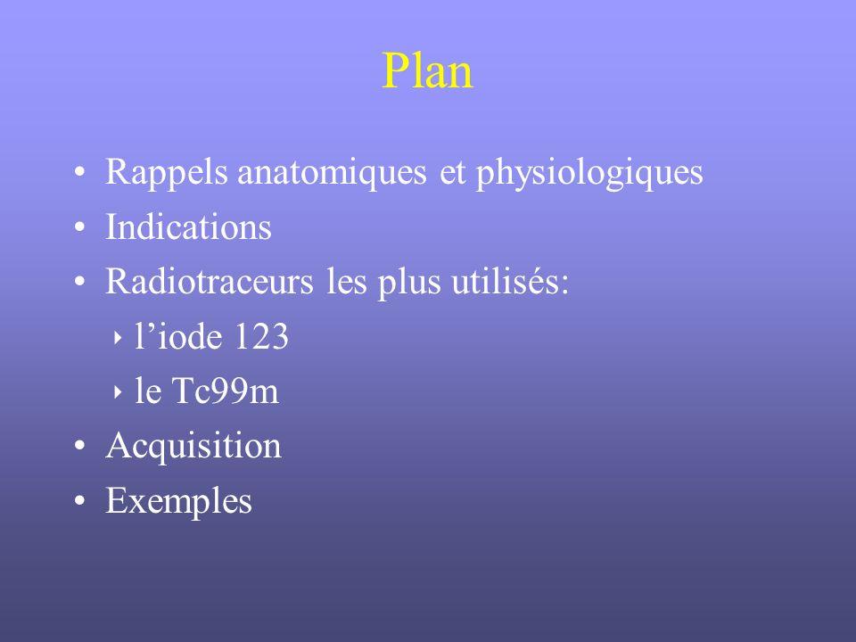 Plan Rappels anatomiques et physiologiques Indications