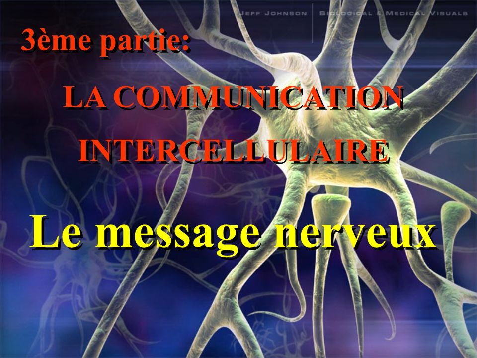 LA COMMUNICATION INTERCELLULAIRE