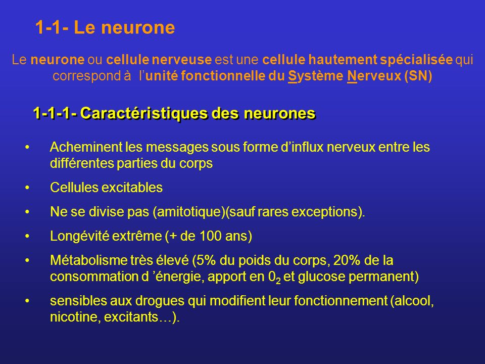 1-1- Le neurone 1-1-1- Caractéristiques des neurones