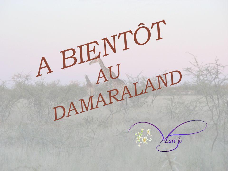 A BIENTÔT AU DAMARALAND