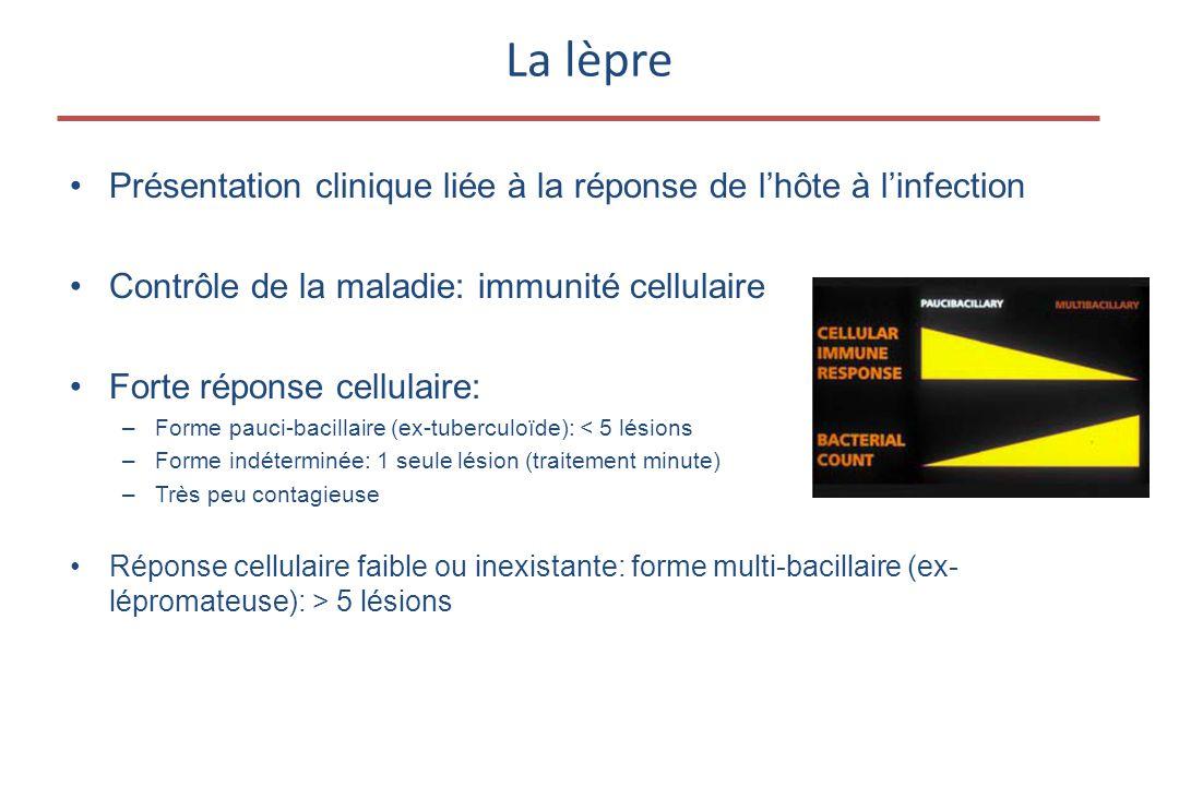 La lèpre Présentation clinique liée à la réponse de l'hôte à l'infection. Contrôle de la maladie: immunité cellulaire.