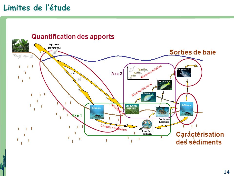 Limites de l'étude Quantification des apports Sorties de baie