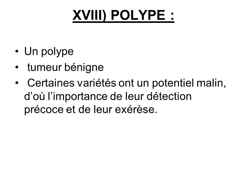XVIII) POLYPE : Un polype tumeur bénigne