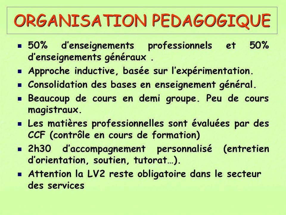 ORGANISATION PEDAGOGIQUE