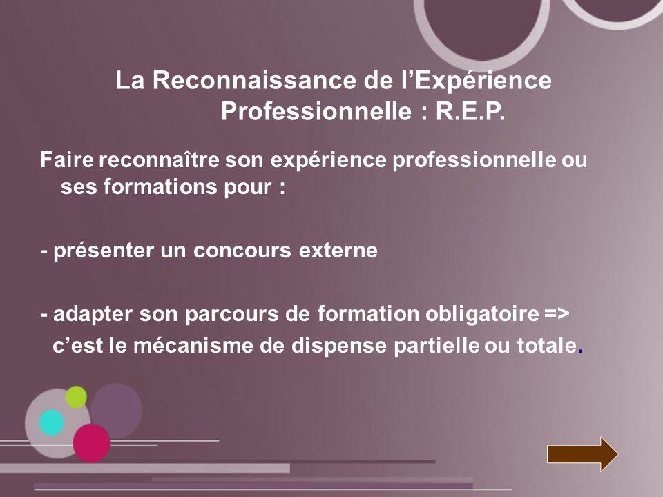 La Reconnaissance de l'Expérience Professionnelle : R.E.P.