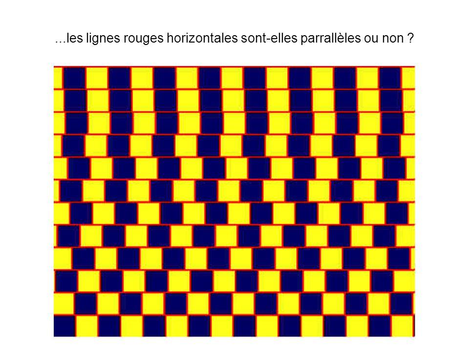 ...les lignes rouges horizontales sont-elles parrallèles ou non