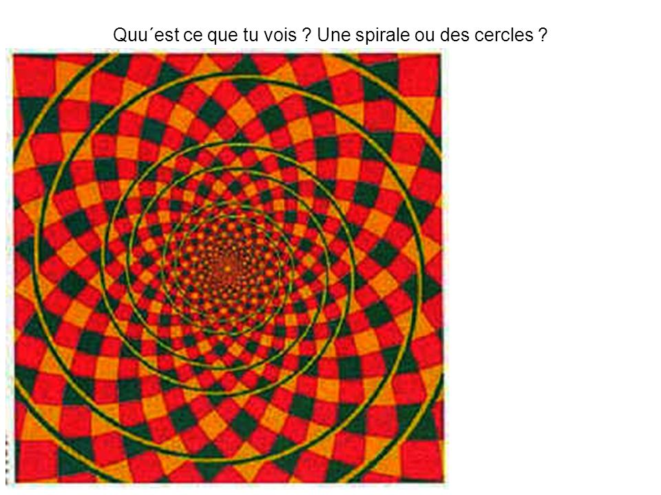 Quu´est ce que tu vois Une spirale ou des cercles
