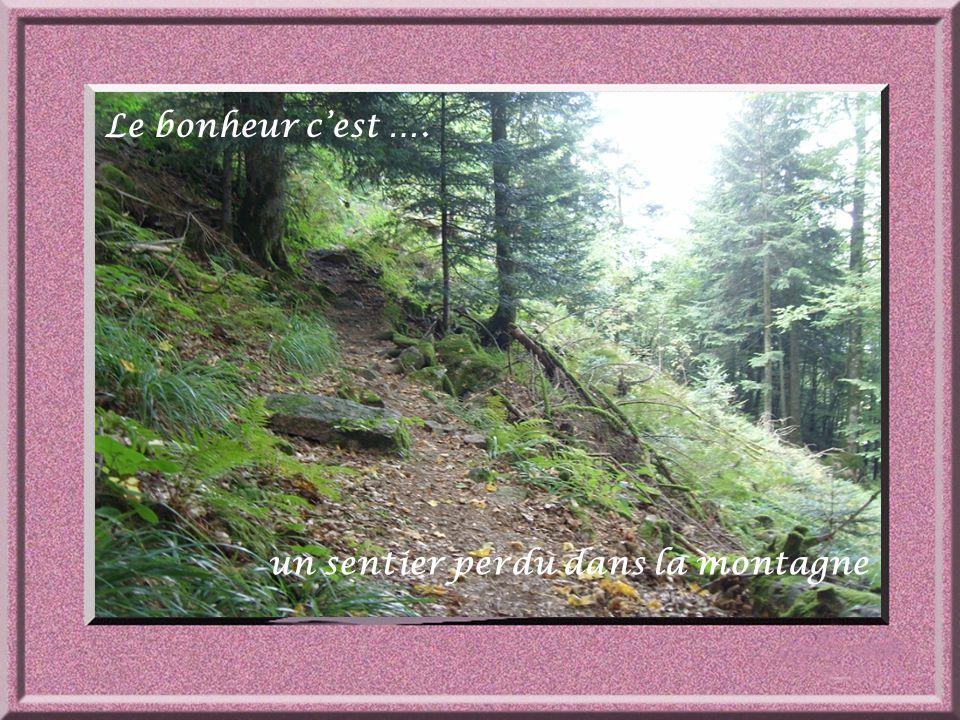 un sentier perdu dans la montagne