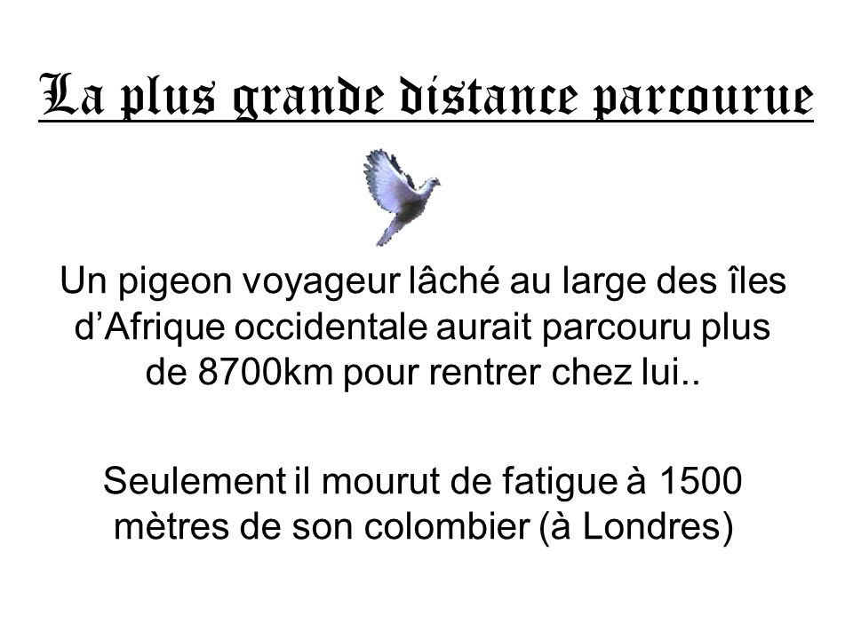 La plus grande distance parcourue