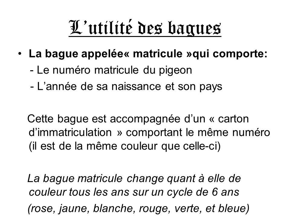 L'utilité des bagues La bague appelée« matricule »qui comporte: