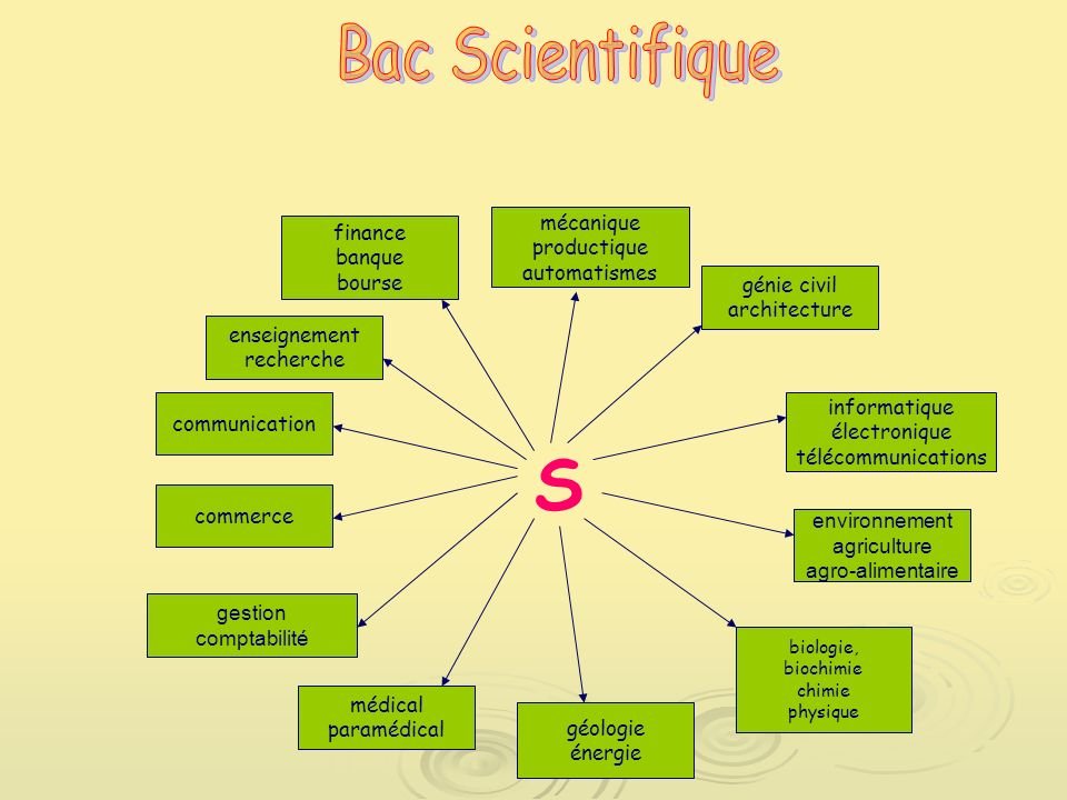 S Bac Scientifique mécanique finance productique banque automatismes