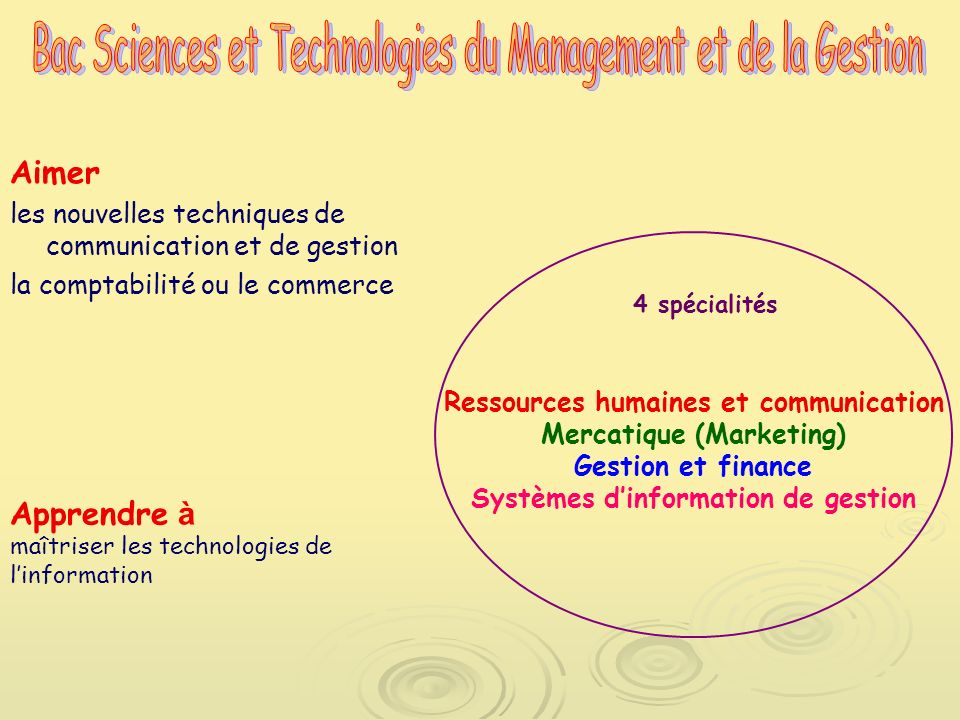 Bac Sciences et Technologies du Management et de la Gestion