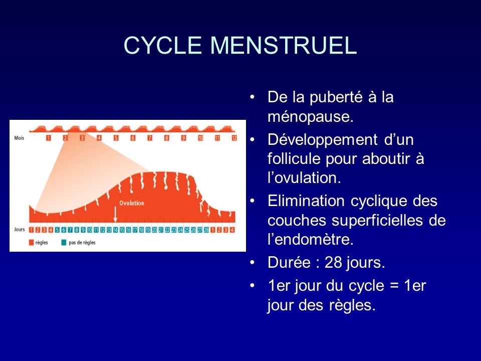 CYCLE MENSTRUEL De la puberté à la ménopause.