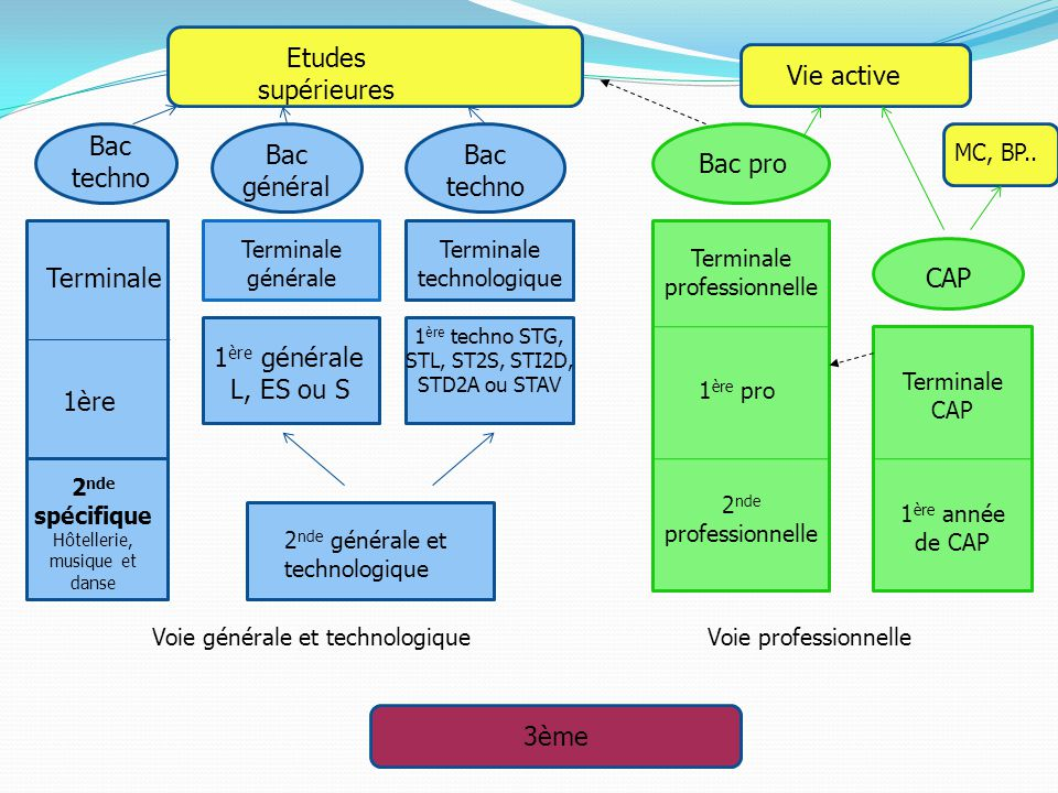 Etudes supérieures Vie active Bac techno Bac général Bac techno