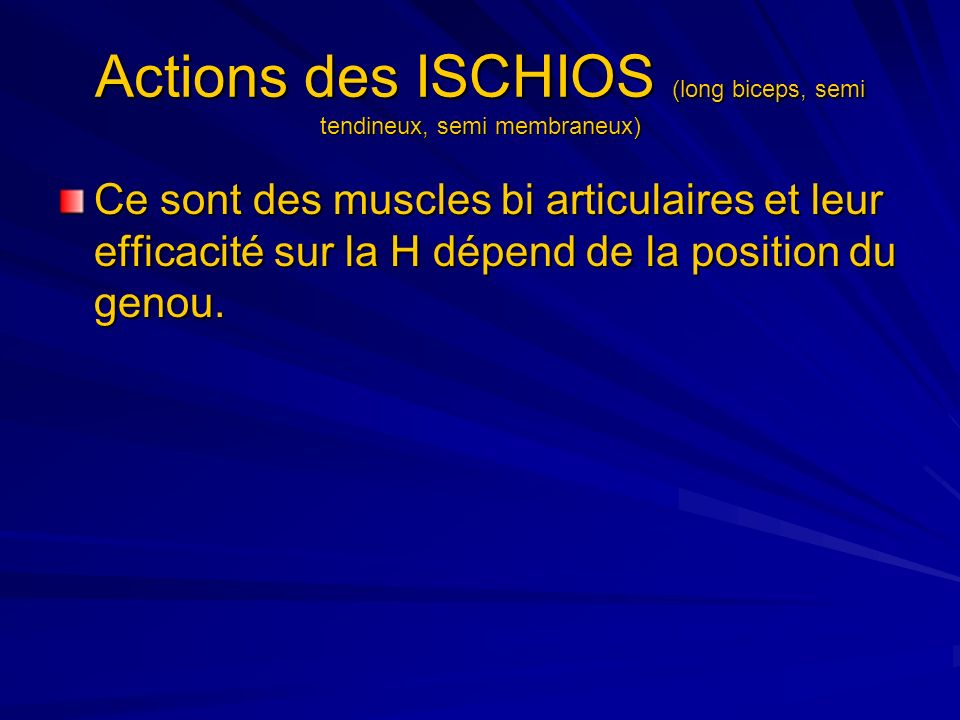 Actions des ISCHIOS (long biceps, semi tendineux, semi membraneux)
