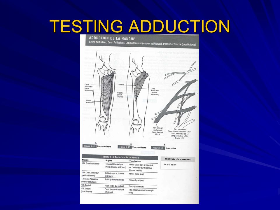 TESTING ADDUCTION