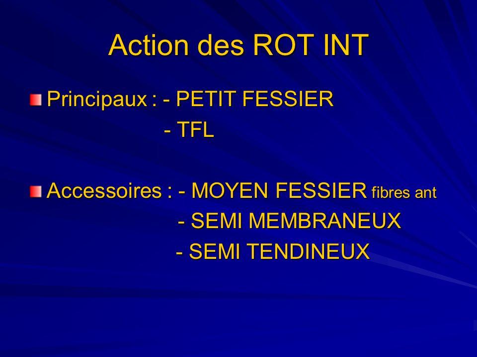 Action des ROT INT Principaux : - PETIT FESSIER - TFL