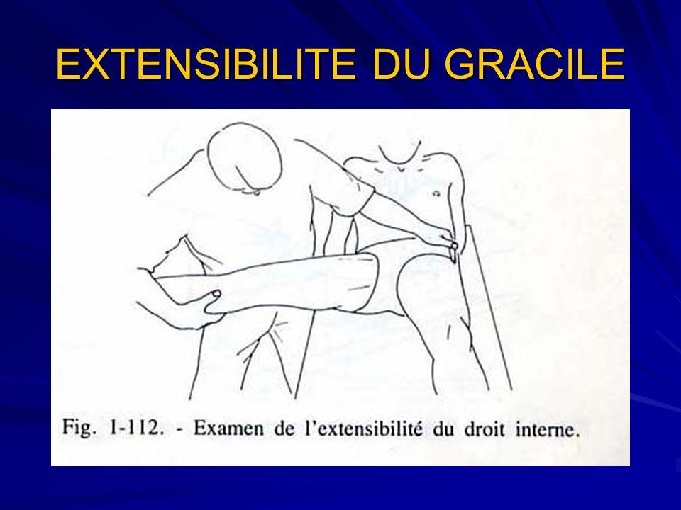 EXTENSIBILITE DU GRACILE