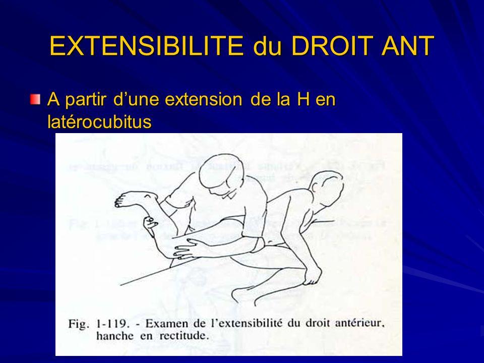 EXTENSIBILITE du DROIT ANT