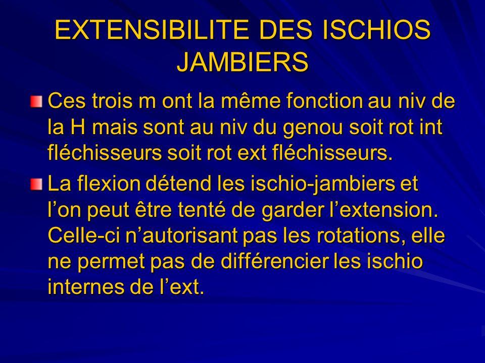 EXTENSIBILITE DES ISCHIOS JAMBIERS