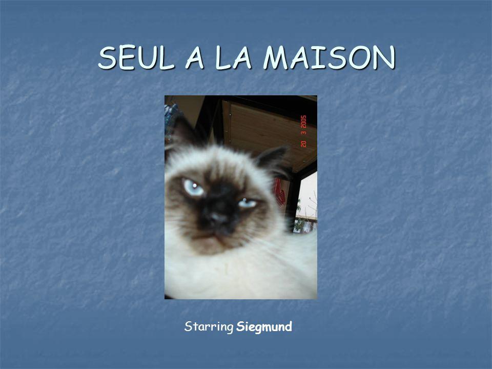 SEUL A LA MAISON Starring Siegmund