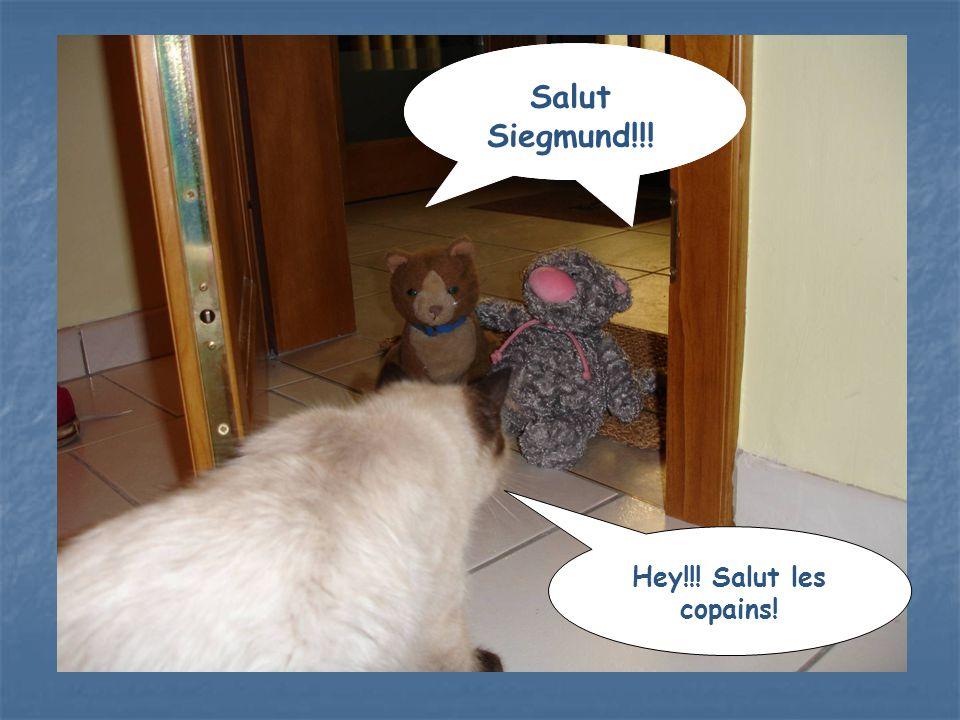 Salut Siegmund!!! Hey!!! Salut les copains!