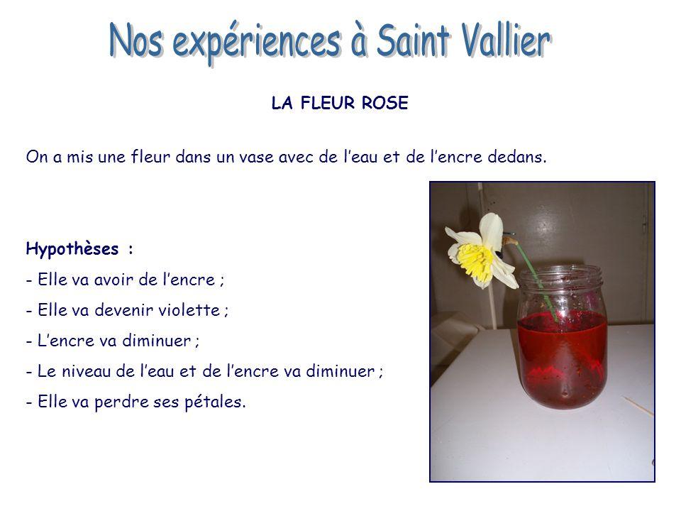 Nos expériences à Saint Vallier