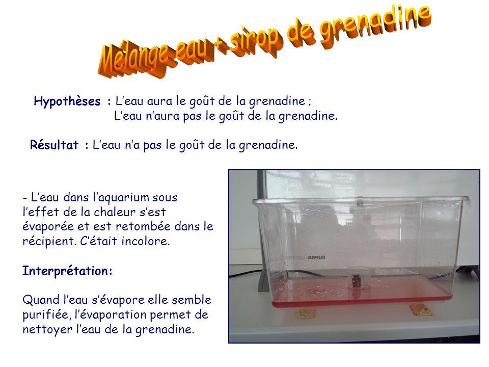 Mélange eau + sirop de grenadine