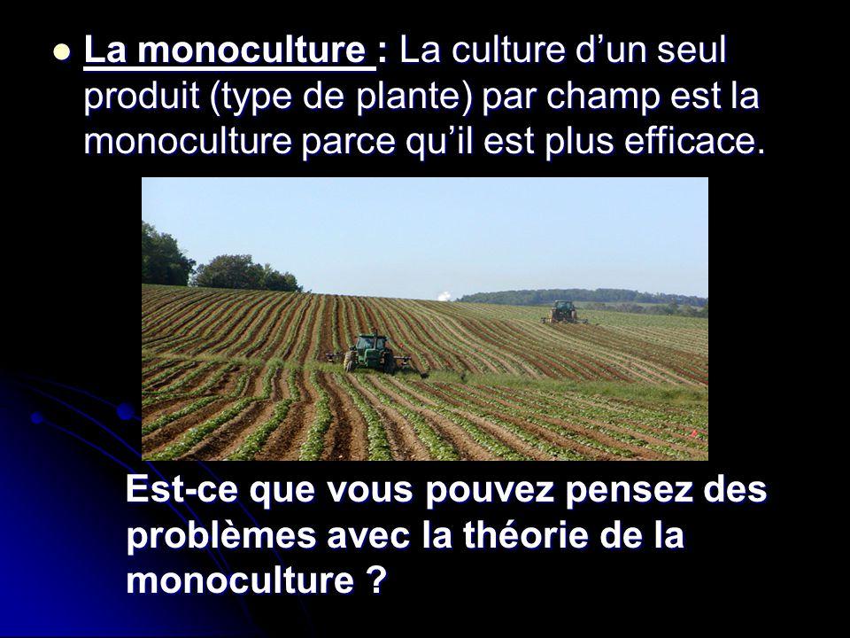 La monoculture : La culture d'un seul produit (type de plante) par champ est la monoculture parce qu'il est plus efficace.