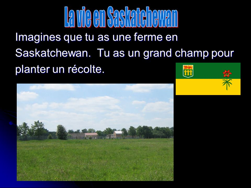 La vie en Saskatchewan Imagines que tu as une ferme en